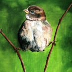'musje' door moeder Janny Bonnes van Nes